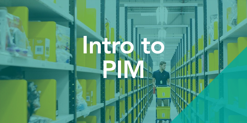 An introduction to PIM